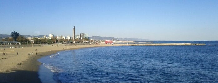 El Túnel del Port is one of สถานที่ที่ Gizem ถูกใจ.