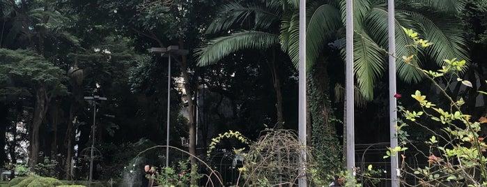 Parque Cultural Paulista is one of Elis'in Beğendiği Mekanlar.