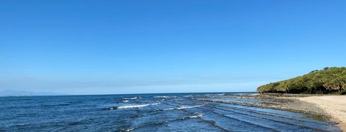 鬼の洗濯板 (青島の隆起海床と奇形波蝕痕) is one of ZNさんのお気に入りスポット.
