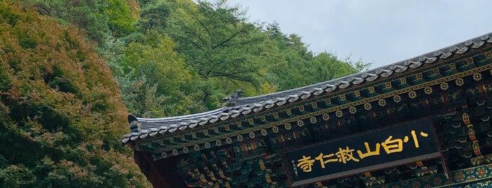 구인사 (救仁寺) is one of South Korea.