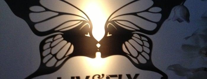 Liv & Fly is one of Noites em Porto Alegre.