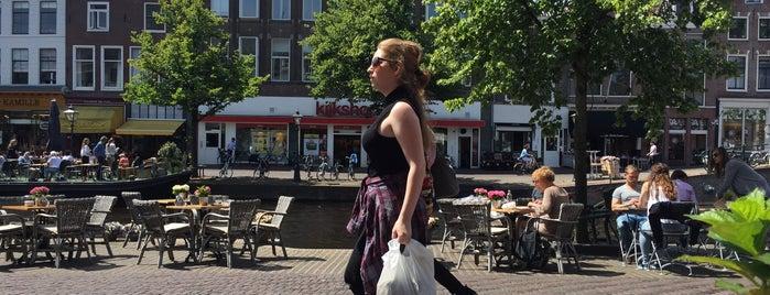 Wielinga is one of Leiden.