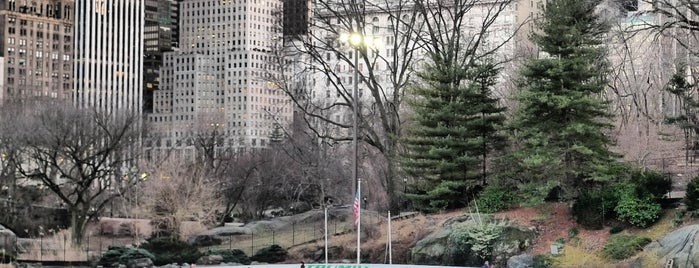Wollman Rink is one of my #NYCMustSee4sq.
