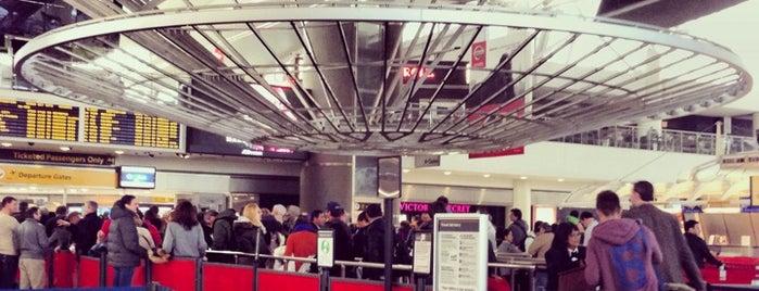 John F. Kennedy International Airport (JFK) is one of สนามบินนานาชาติ (1).