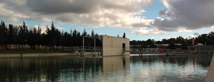 Parque da Cidade is one of Lugares favoritos.