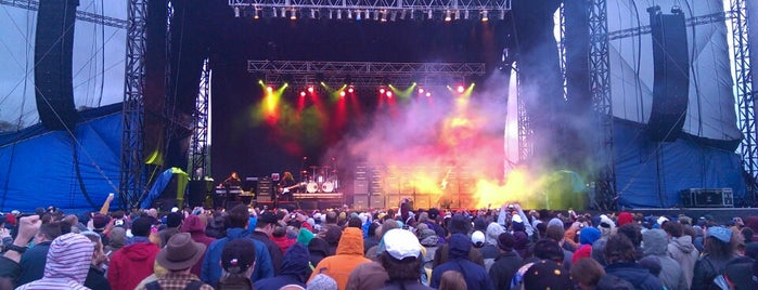 Beale Street Music Fest is one of 1000 Places to See Before You Die - Midwest.