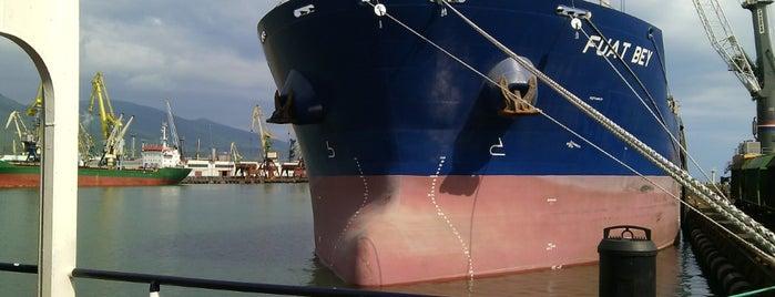 Новороссийский морской торговый порт is one of Анапа-Геленджик.