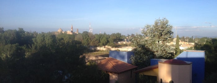 Hotel Lomas Del Calvario is one of Posti che sono piaciuti a Jaime.