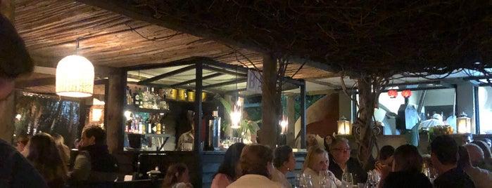 Mistura Restaurante - Punta Del Este is one of สถานที่ที่ DAMIAN ถูกใจ.
