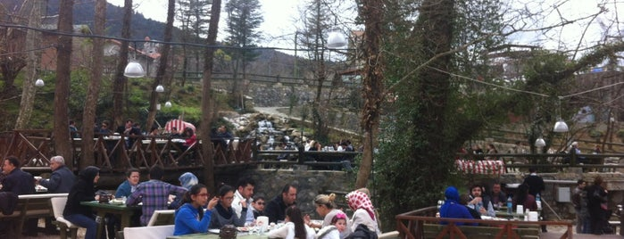 Dere Bahçe Restaurant is one of Bursa- Silkworm List1.