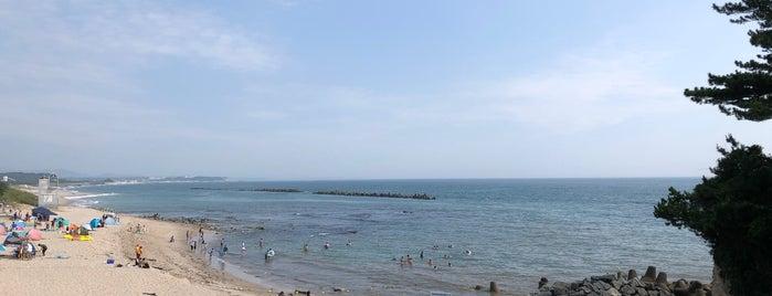 伊師浜海水浴場 is one of 茨城県北ジオパークのジオサイト.