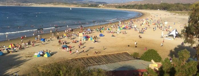 Playa Pichidangui is one of Lieux qui ont plu à Eduardo.