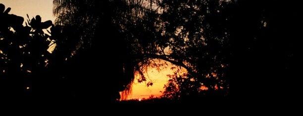 Alto Boa Vista is one of Mato Grosso.