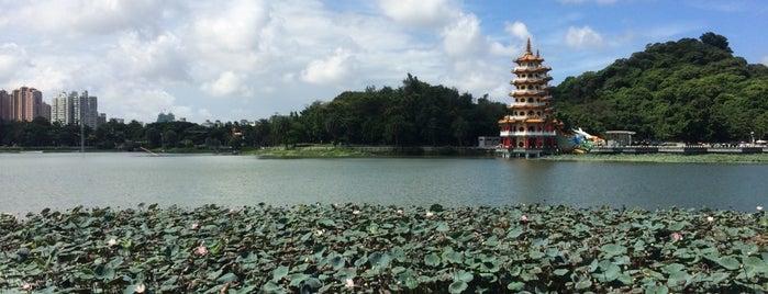 Lotus Lake is one of Jas' favorite urban sites.