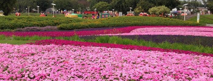 Taipei Expo Park is one of taipei.