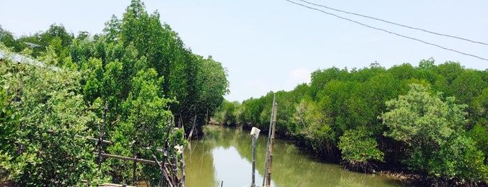 Yao Noi Island is one of สถานที่ที่ Daniel ถูกใจ.
