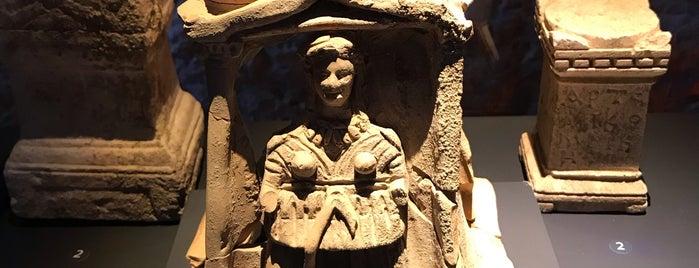 Likya Uygarlıkları Müzesi is one of Adrasan Olimpos Çıralı.