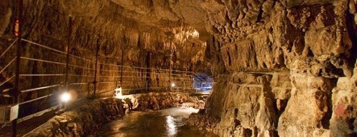 Grotte di Stiffe is one of Locais curtidos por Marco.
