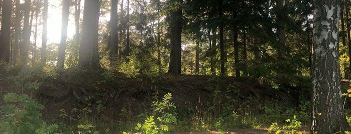 Ison Kallahden uimaranta is one of Locais curtidos por Ylkär.
