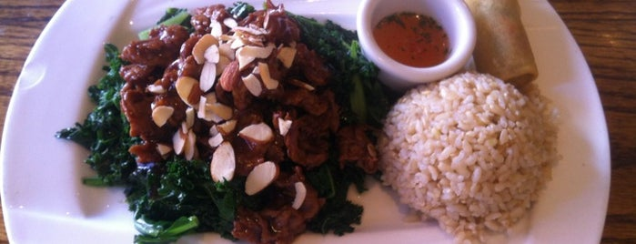 Wild Ginger Pan-Asian Vegan Cafe is one of New York IV.