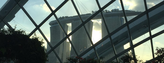 The Canopy is one of Singapur.