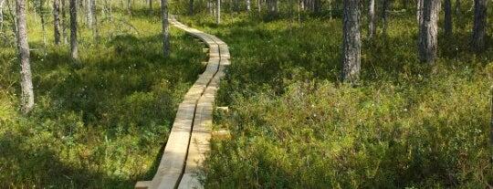 Valkmusa National Park is one of Достопримечательности Финляндии.