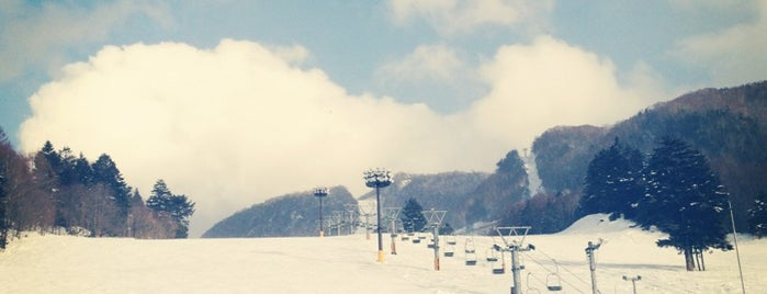 丸沼高原スキー場 is one of Orte, die Shioura gefallen.