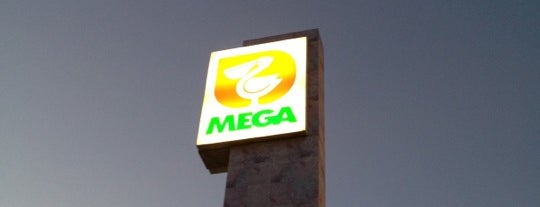 Mega Comercial Mexicana is one of Lieux qui ont plu à Hector.