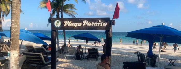 Club de Playa El Paraiso is one of Carrie : понравившиеся места.