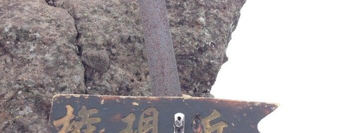 Mt. Gongen is one of 山行記録.