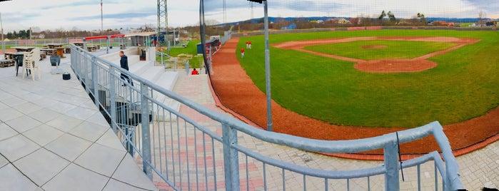 Ducks Field is one of Ismaël : понравившиеся места.