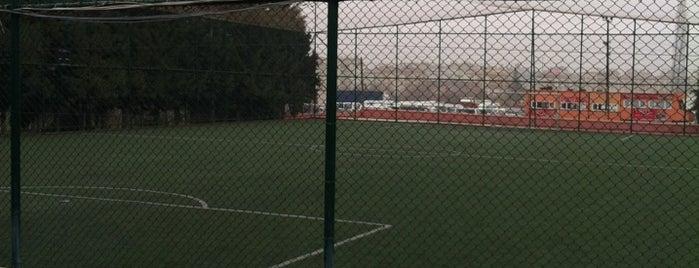 Caner Spor Center & Halı Saha is one of Lieux qui ont plu à Sedat.