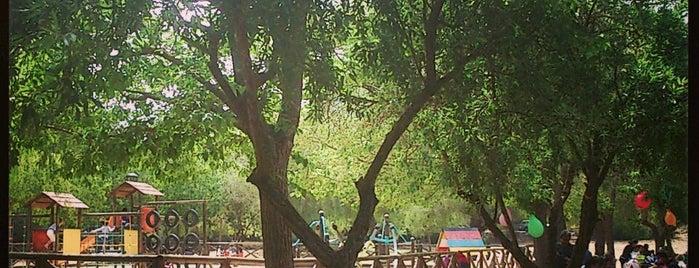 Pinosol Park is one of Tempat yang Disukai Anastasiya.