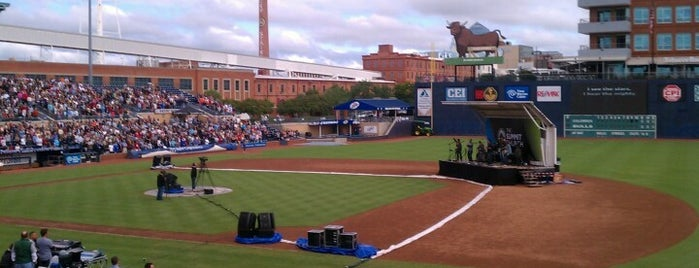 Tampa Bay Rays Minor League Parks