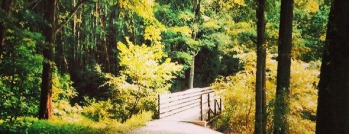 Three Lakes Park is one of Eric'in Beğendiği Mekanlar.