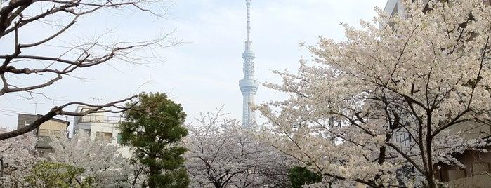 山谷堀公園 is one of Posti che sono piaciuti a JulienF.