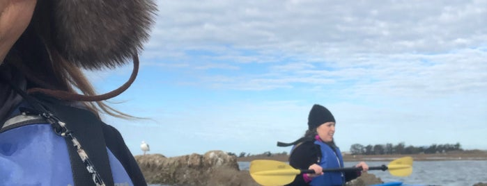 Kayak Connection is one of Best of Monterey.
