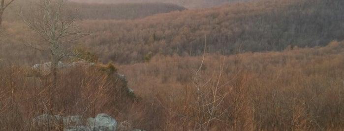 Tanners Ridge Appalachian Trail (Shenedoah National Park) is one of Lieux qui ont plu à Bradford.