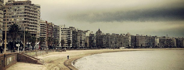 Playa de los Pocitos is one of Montevideo.