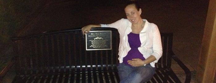 Toni Russell Memorial Bench is one of Orte, die Ibs gefallen.