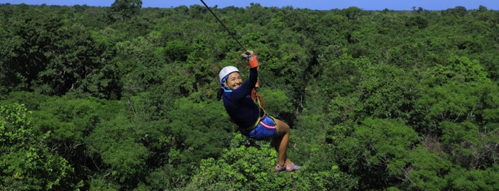 Selvatica is one of Cancun.