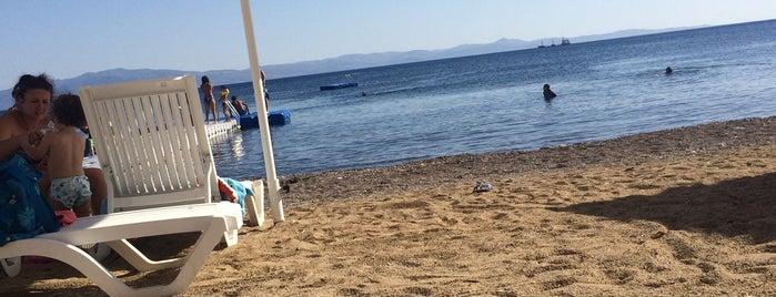 Cam Beach is one of Selim : понравившиеся места.