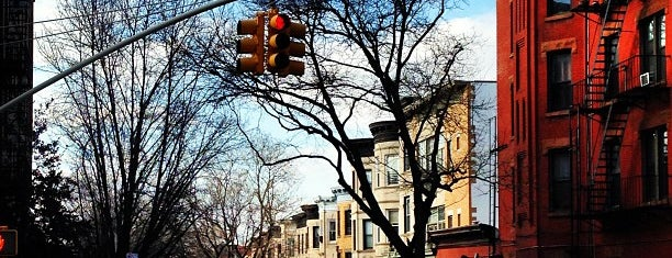 Park Slope is one of New York.
