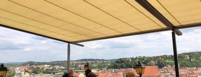 Domkeller is one of Dresden.