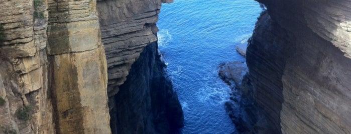 Tasman Arch is one of Mirinha★ 님이 좋아한 장소.