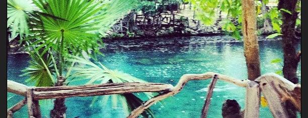 Cenote chac mool is one of สถานที่ที่ L ถูกใจ.