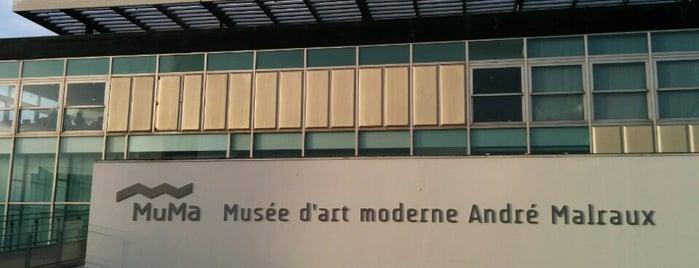 Musée d'Art Moderne André Malraux is one of Posti salvati di Pau.