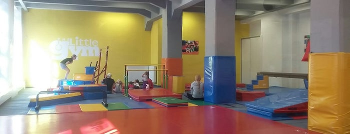 The Little Gym is one of Prague for kids.