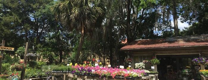 Garden Gate Nursery is one of Posti che sono piaciuti a Sarah.