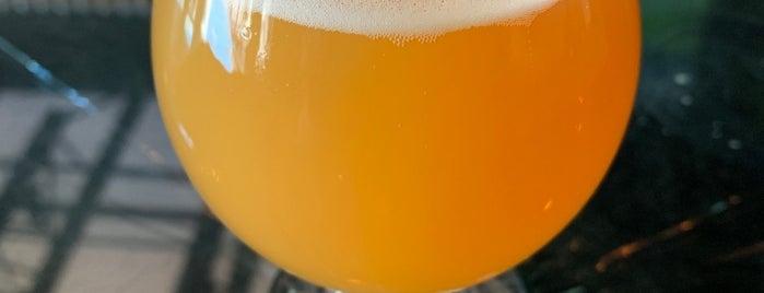 Thin Man Brewery is one of Tempat yang Disukai Cole.